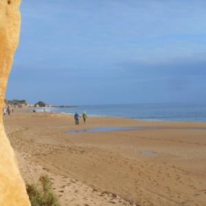 L'Algarve des trois printemps