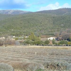 La Drôme : le pays de l'olivier, de la lavande, de la vigne et de la truffe