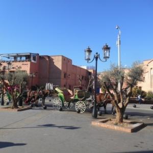 Marrakech, au coeur de l'art andalou