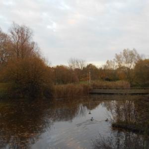 nature et tranquillite