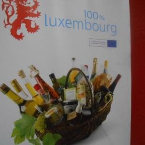 Miselerland, la Moselle luxembourgeoise, une superbe région viticole près de chez nous