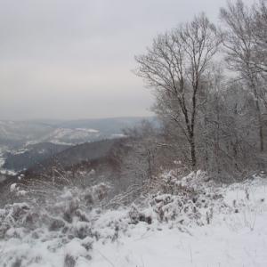 A la découverte du patrimoine naturel, culturel et gastronomique des Ardennes françaises