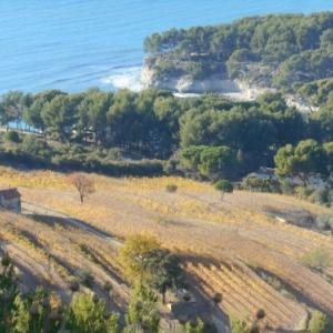 cassis - route des cretes