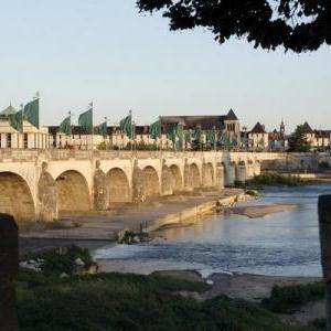 Tours, Pont Wilson