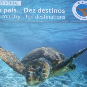 L'ile de Sal, no stress...c'est le Cap Vert!