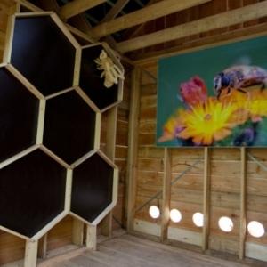 nouveaute : ruche artistique