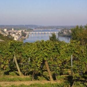 Saumur et les vignobles de Saumur-Champigny