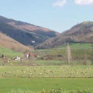 Saint-Jean-de-Luz, perle du Pays basque