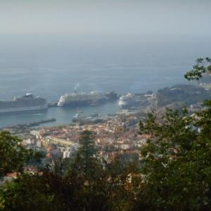 vue sur le port de funchal