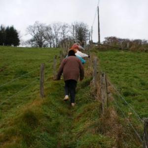 it's a long way to Vellereux