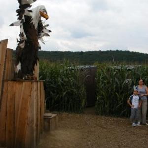 Grand Aigle en rajoute