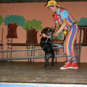 Quelle magie! z'avez vu la couleur de l'oeil du chien?