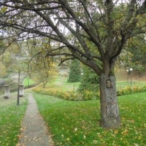 Le golf, arr. plan; a g.: promenade long de l'Ourthe