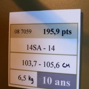 Chaque trophee a son etiquette. Celui-ci a recuilli 195,9 points. Chaque perche compte 14 cors. Celle de gauche fait 103,7 cm, celle de droite 105,6. Le tout fait 6,5 kg. Age: 10 ans.