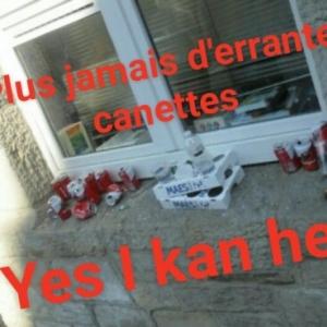 C'est quoi une incivilitE environnementale? Image prise dans une rue de Houffalize.