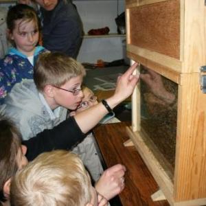 Les enfants, les abeilles, et Janique.