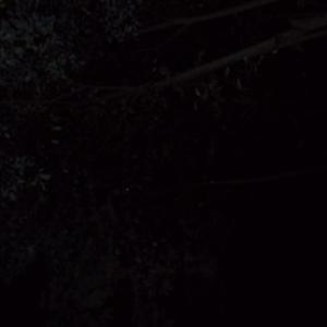 Juste en-dessous de la lampe, quand on regarde en l'air.