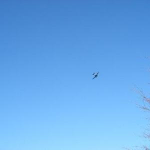 42. ronde du DC 4 au-dessus de la drop zone