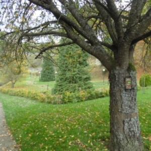 Le golf, a g. promenade le long de l'Ourthe.