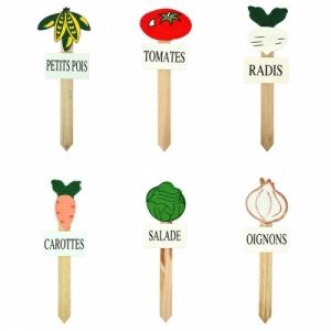 divers legumes
