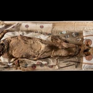 « La brodeuse Euphemia » et son mobilier funéraire, Antinoé, datation C14 de cheveux de la « momie » : 430-620 (95,4 % de probabilité), MRAH