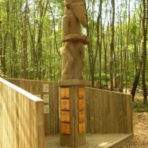 CHLOROPHYLLE, het recreatiebos van Manhay in Dochamps.