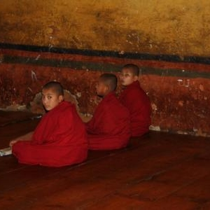 leerling monnikken