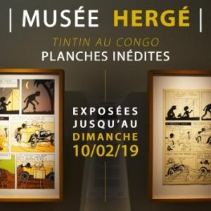 """""""Tintin au Congo"""" : la page 31 des versions colorisee/2019 et originale/1931 (c) Herge-Moulinsart 2019"""