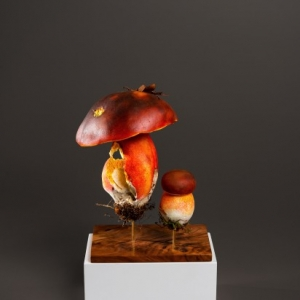 "(c) ""Caracas"" / V. Clamot / ""Galerie Framing"""