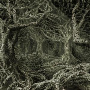 """Phloem"" (646 x 490 cm) (c) A. Musco"