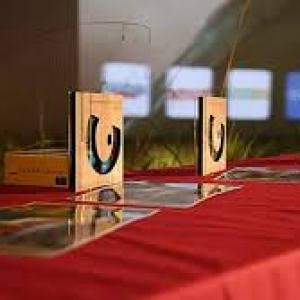 Films d'Amateurs : Les Prix