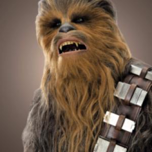 """Chewbacca"" TM & (c) 2014 Lucasfilm Ltd."