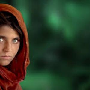 Sharbat Gula, Peshawar, Pakistan, 1984 (c) Steve McCurry