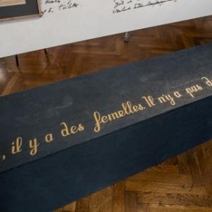 Citation de Baudelaire, sur les Femmes (c) Musee de la Ville de Bruxelles