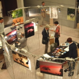 Une Salles d'Expo (c) AVES