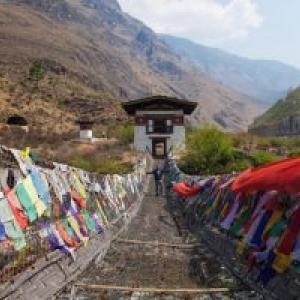 """""""Circle of Poison"""", du Tibet aux Etats-Unis"""