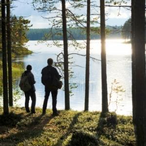"""Region de Kainuu, en Finlande (c) """"Lonely Planet"""""""