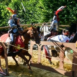 """""""Marche Renaissance"""", dans le """"Parc Royal"""" : Joute a cheval"""