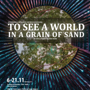 To See a World in the Grain of Sand