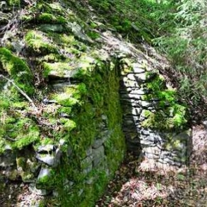 Chateau des comtes de Salm_3428