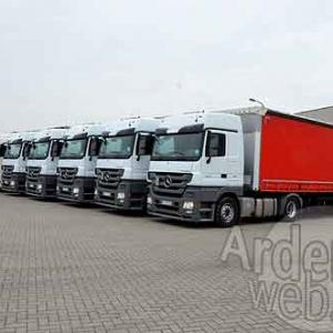 Palifor Logistics-7156