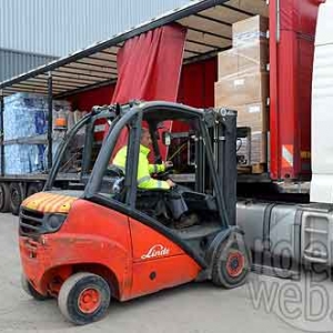 Palifor Logistics-7684
