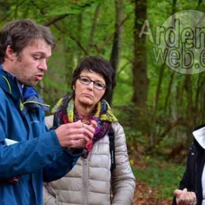 Promenade champignons avec BARNABE EK--1062