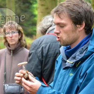 Promenade champignons-1096