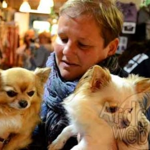 concours du plus beau chien du monde - video 03