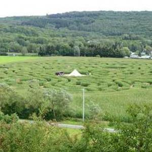 Labyrinthe de Barvaux sur Ourthe