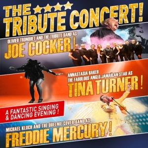 16 mars - 20h. THE 4**** TRIBUTE CONCERT! Joe Cocker , Tina Turner , Freddie Mercury