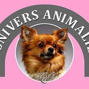 Univers Animalier