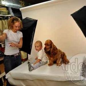 le plus beau chien du monde - 088