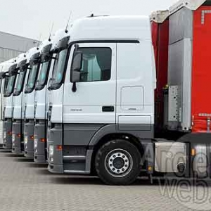 Palifor Logistics-7151